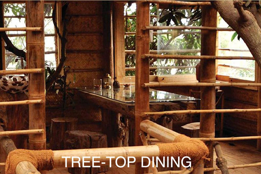 Treetop Dining Table at Aura Kalari